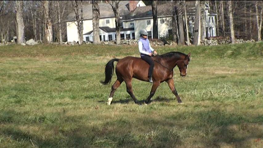 Liberty Rein riding