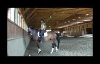 FDH Confident trail riding workshop, Bethlehem, CT May 4