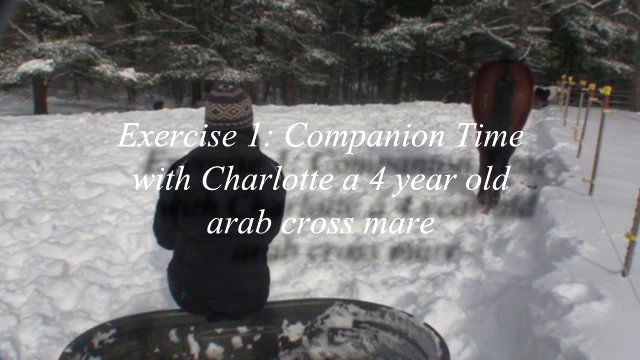 Companion Time Exercise