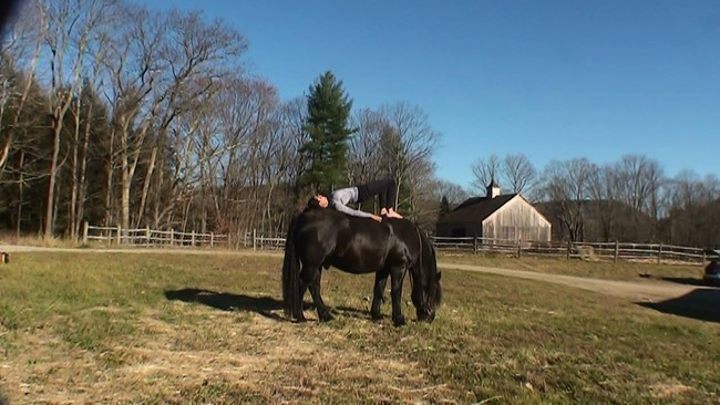 FDH Equine and Human Yoga class with Farah and Kate Perna July 19th