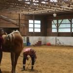 Longitudinal back mobility check