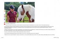 Horsetalk NZ-August 2014