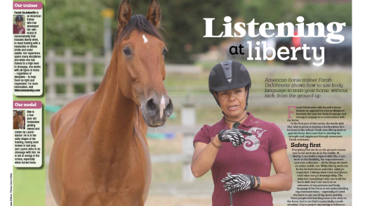 Horse and Rider UK 2014