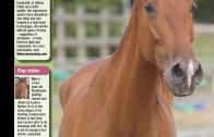 Horse&Rider-October 2014