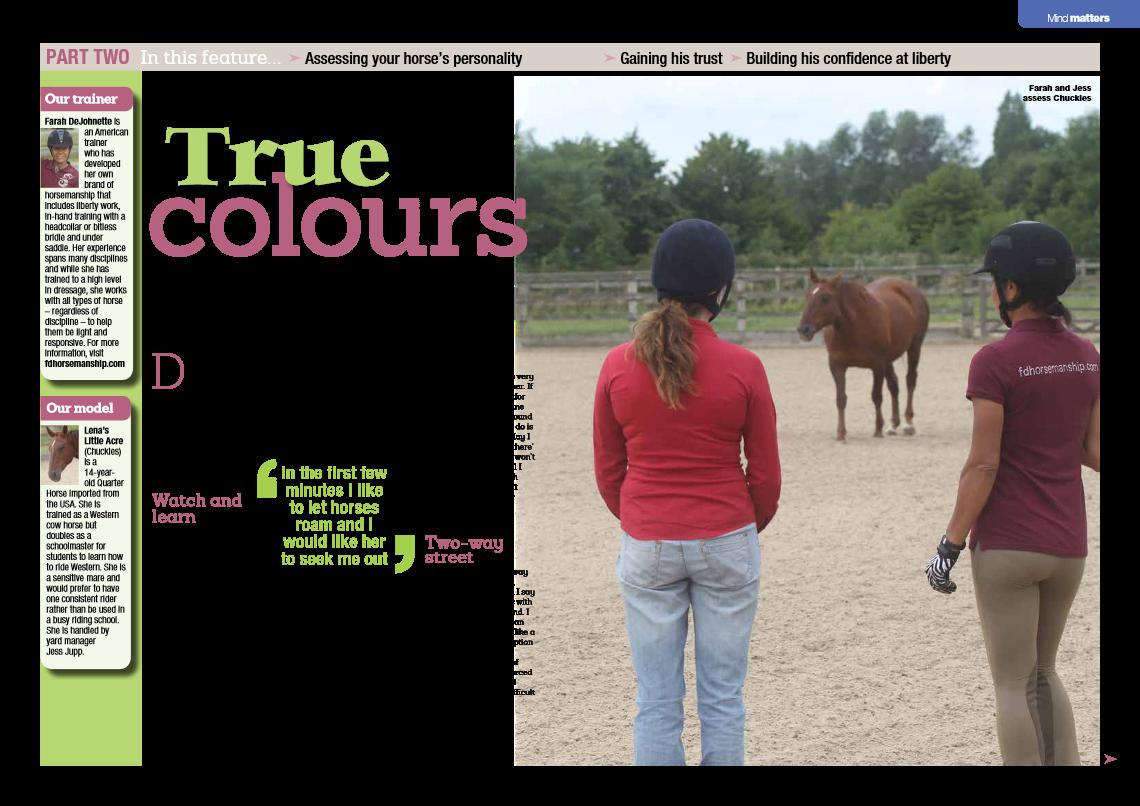 Horse&Rider-November 2014