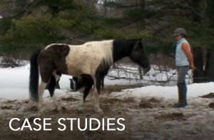 case-studies-JUNE16