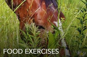food-exercises