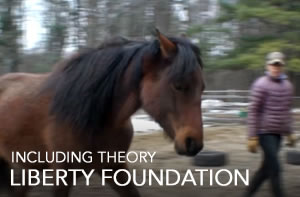 liberty-foundation-JUNE16