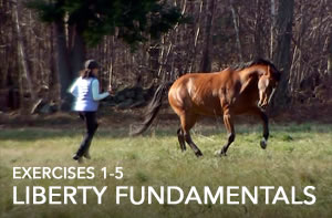 liberty-fundamentals