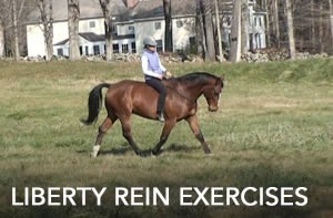 liberty rein exercises