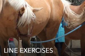 line-exercises