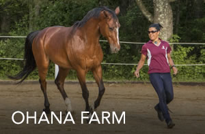 ohana-farm-JUNE16