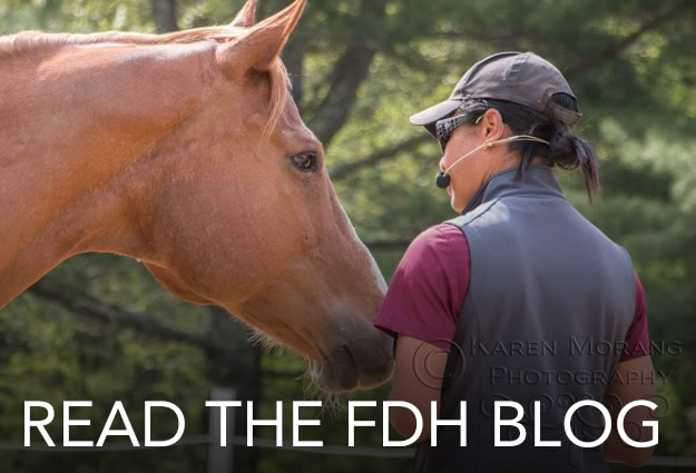 read-the-fdh-blog-june16