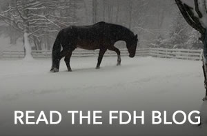 read-the-fdh-blog-sm