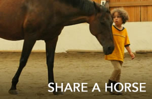 share-a-horse