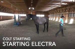 starting-electra
