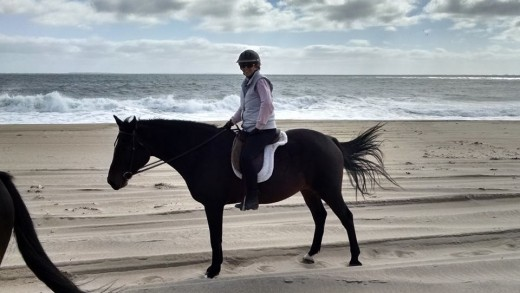 5 elements farah dejohnette horsemanship