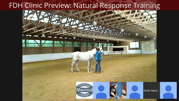 Earth Horse and NRT Demo