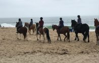 FDH Beach ride clinic Oct 6